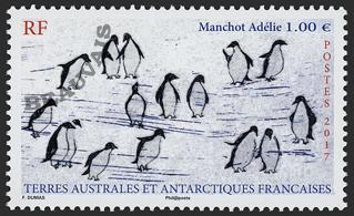 Terres-Australes - 2018/01 - Manchots sur la Banquise