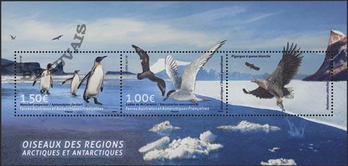 Terres-Australes - 2018/01 - Oiseaux arctiques et antarctiques